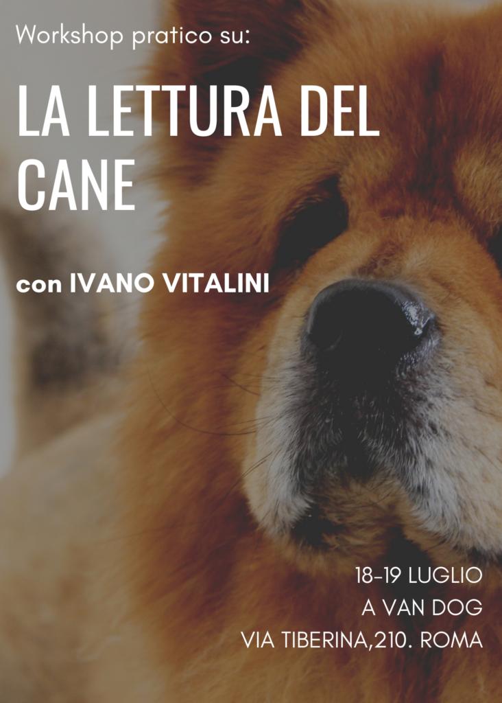 lettura del cane locandina
